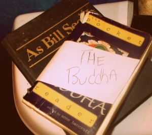 Necessary Items 4 a family outing: travel Buddha and Daily Reflections!