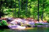 the grove 2