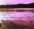 Burn's Lake, NH