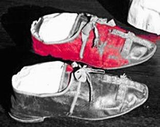 220px-papal_shoes