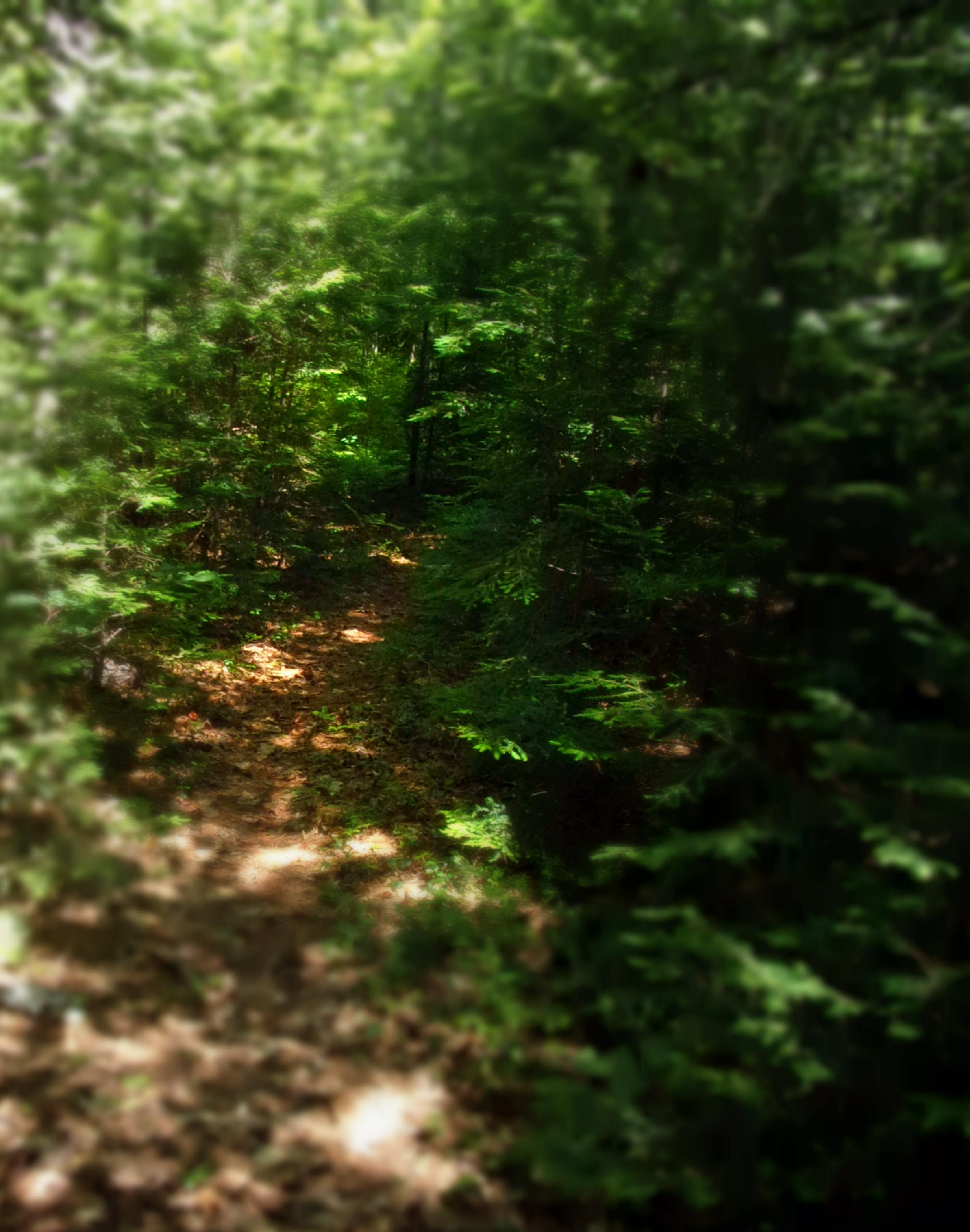 broken trail 2