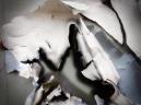 wman n wallpaper